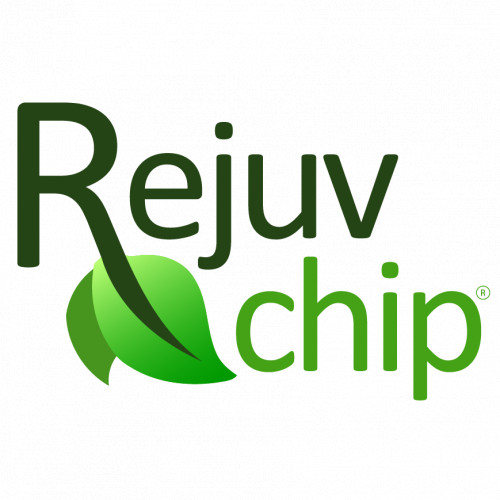 Rejuvchip Fort Lee